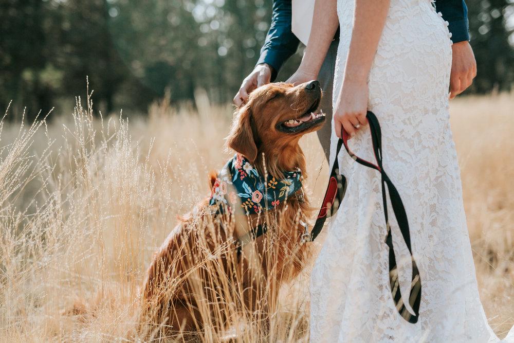 Sunriver Oregon Backyard Intamate Wedding- Grace and Jaden Photography (34).jpg