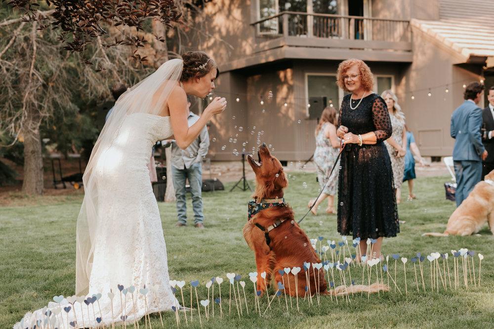 Sunriver Oregon Backyard Intamate Wedding- Grace and Jaden Photography (88).jpg