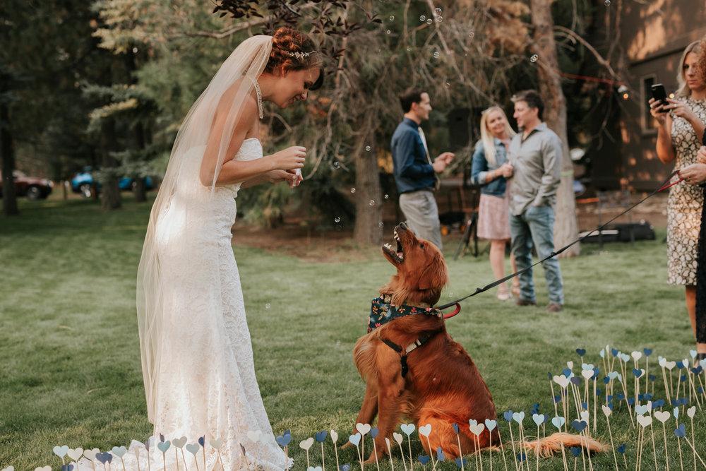 Sunriver Oregon Backyard Intamate Wedding- Grace and Jaden Photography (89).jpg