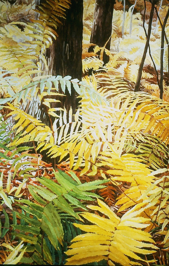 "Fern Forest, 40x22"", sold"