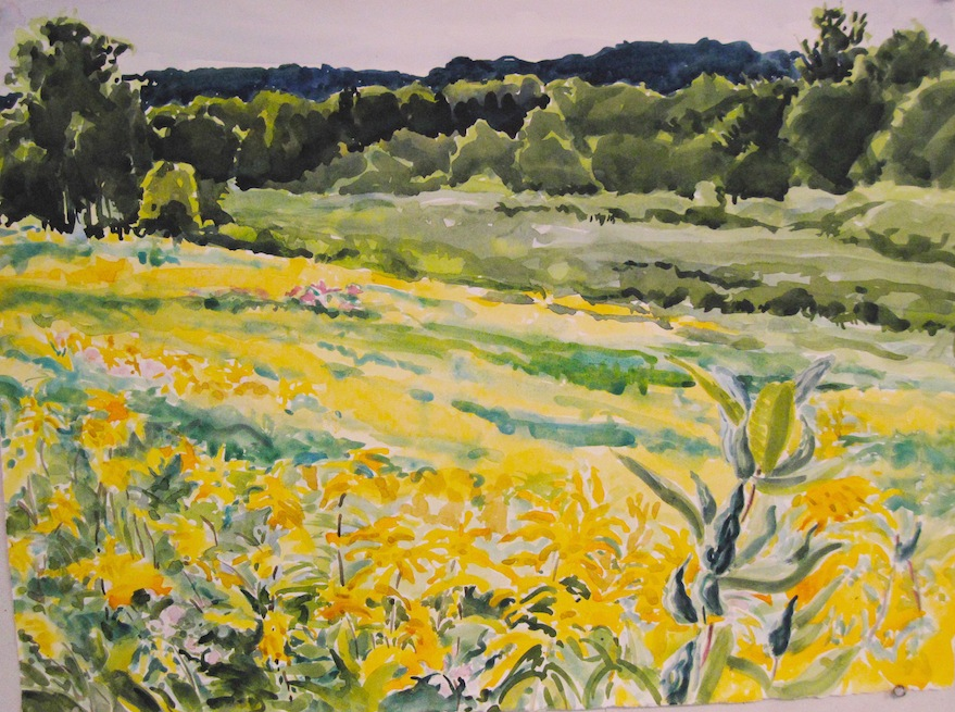 Goldenrod and Milkweed, 22x30""