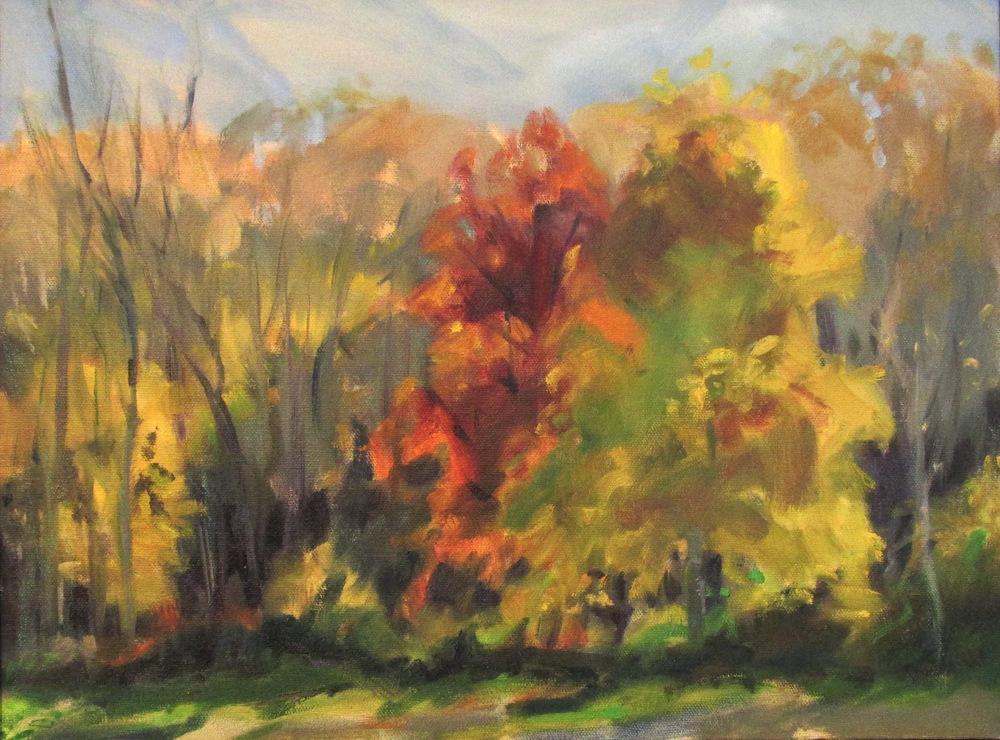 """October, southface, 12x16"""""""