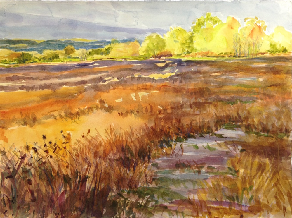 Sienna Fields, 22x30""