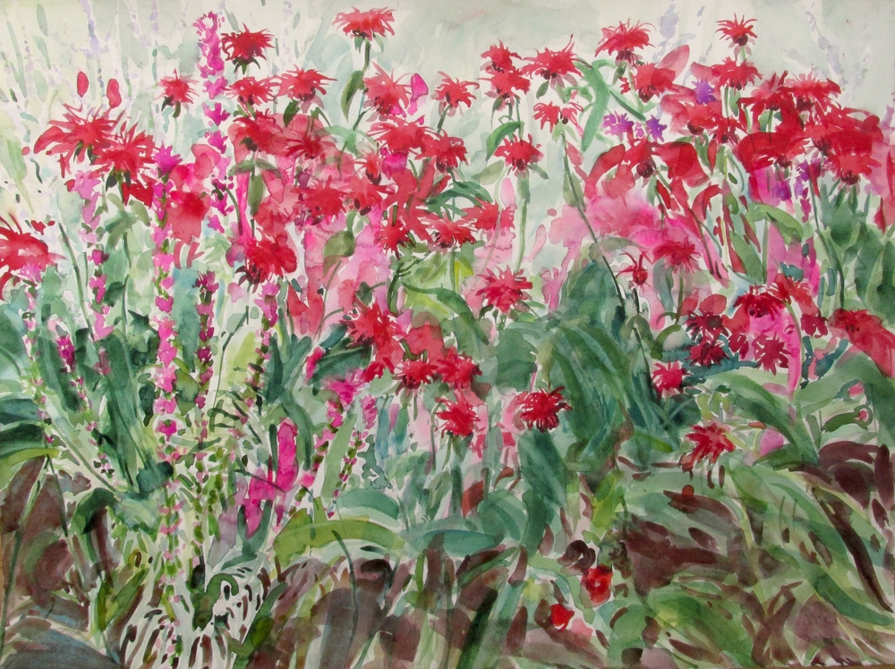 Monarda and Liatris, 22x30