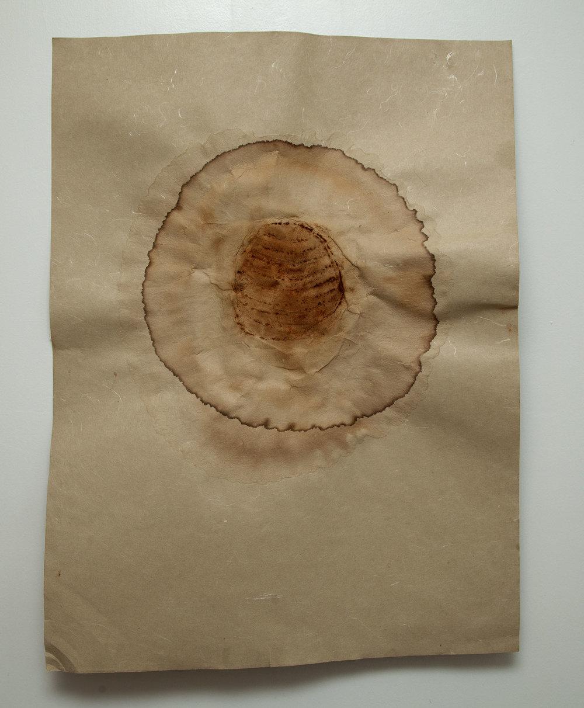 "Untitled , 2014, Rust Dye on Handmade Paper, 18"" x 22"""