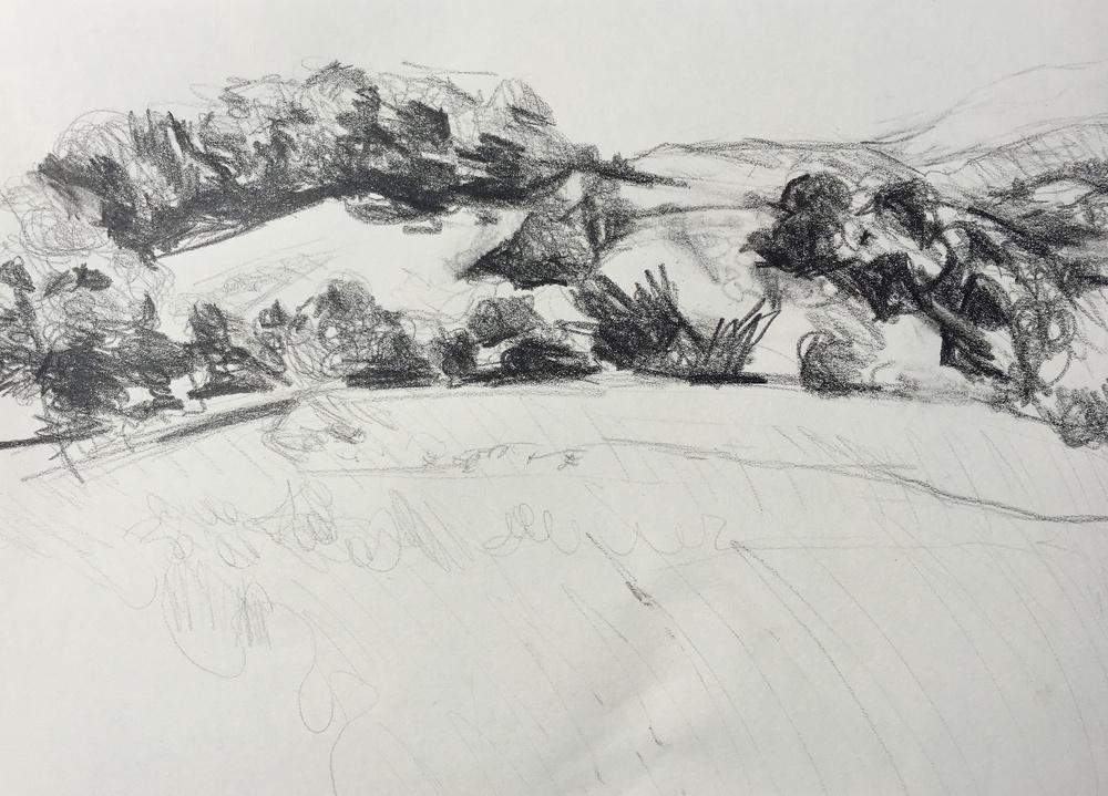 Lauren's drawing of McEnroe Farms.