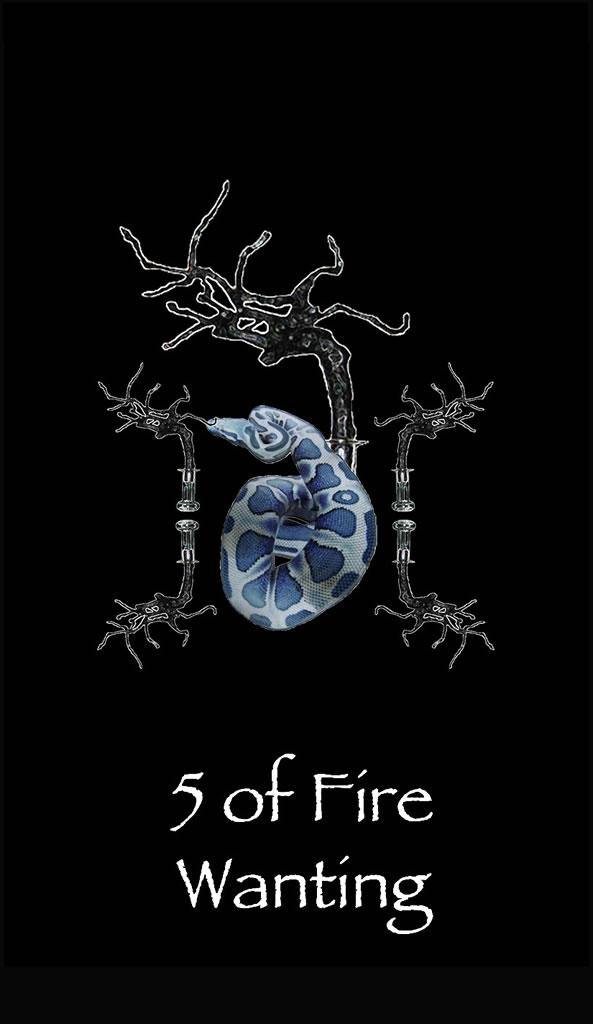 5fire2a.jpg