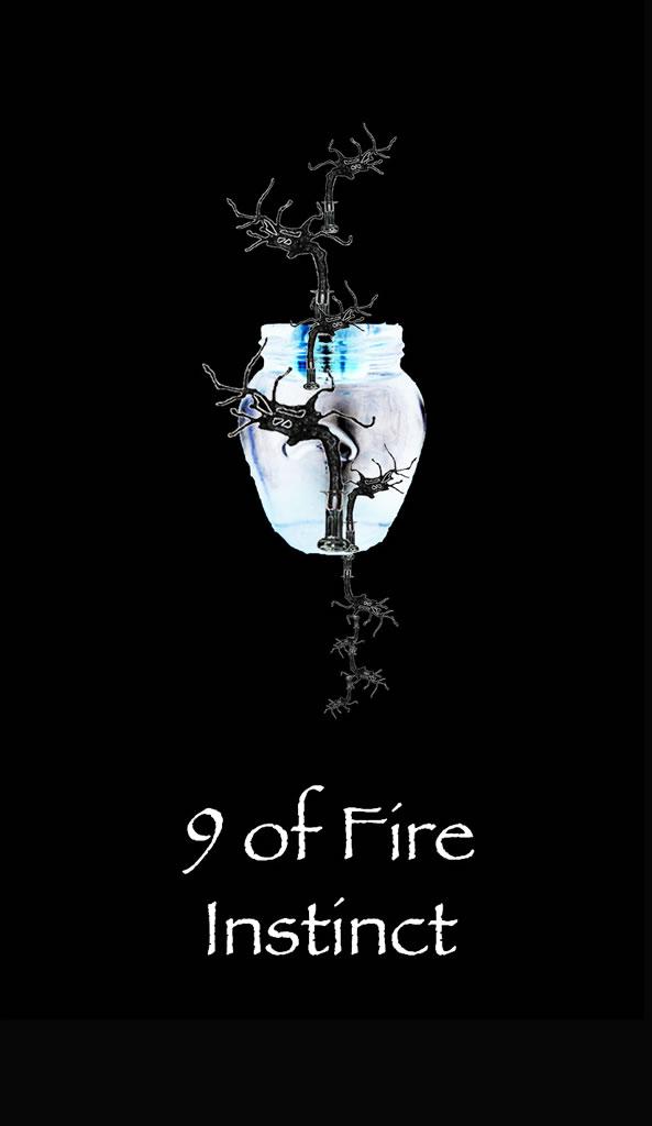 9fire2a.jpg