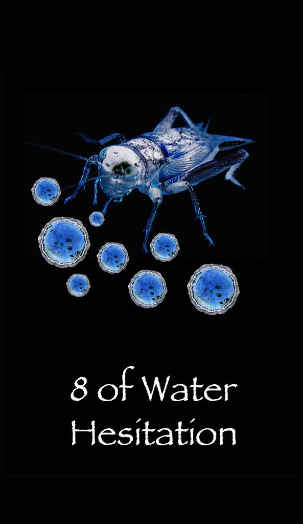 8water2.jpg