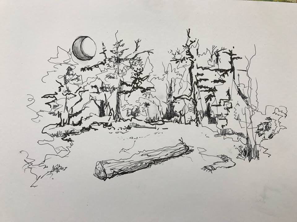 Jackie's illustration of the woods scene.