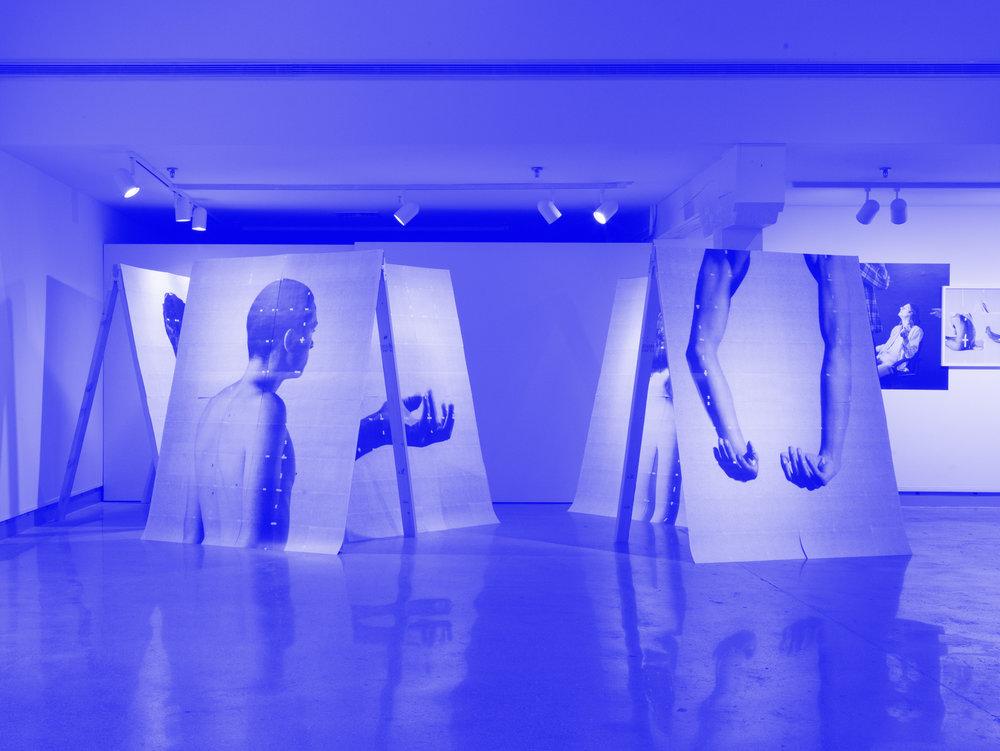 Infinite Replica    DePree Art Center & Gallery    Holland, MI 2016