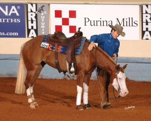 Americasnextgunmodel (Gunner x Cee Dun It Do It):  $223,900  NRHA LTE, 2012 High Roller Reining Classic Futurity Level 4 Open Champion; 2012 NRHA Futurity Level 4 Open Champion; and 2013 NRBC Level 4 Open third place.