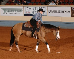 Customized Gunner (Gunner x Custom Made Dunit) – 2012 NRHA Non Pro Futurity Co-Champion; 2012 SWRHA Non Pro Futurity Champion; 2012 Ariat Tulsa Reining Classic Non Pro Futurity Champion; 2013 Cactus Reining Classic L4 Non Pro Champion; 2013 NRBC L4 Finalist; 2013 High Roller Reining Classic Whizkey N Diamonds 4 Year Old Stakes High-Scoring Mare earning a total over  $93,000