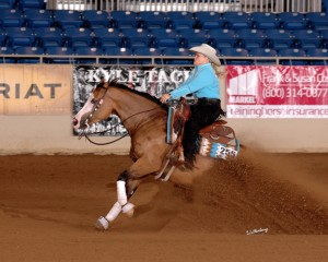 Customized Gunner is a 2009 buckskin mare by Gunner and out of Custom Made Dunit.   2012 NRHA Non Pro Futurity Co-Champion; 2012 SWRHA Non Pro Futurity Champion; 2012 Ariat Tulsa Reining Classic Non Pro Futurity Champion; 2013 Cactus Reining Classic L4 Non Pro Champion; 2013 NRBC L4 Finalist; 2013 High Roller Reining Classic Whizkey N Diamonds 4 Year Old Stakes High-Scoring Mare earning a total over $93,000 Her oldest foals were born in 2014.
