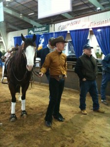 Lyle and SNS Uvalde King watch their Non Pro Futurity run.