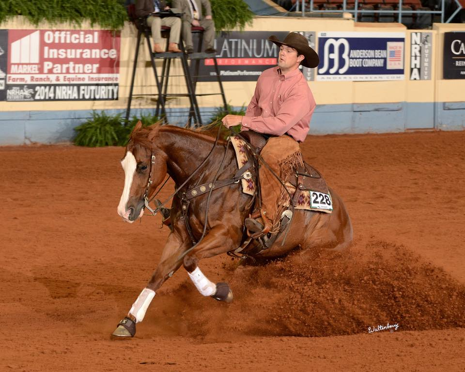 Shiney Little Queen    NRHA Open Futurity Level 3 and 2 third place finisher and NRHA Open Futurity Finalist, One HOT Futurity Open Level 4, 3, and 2 Champion, earned over  $50,850  during her three year old year.