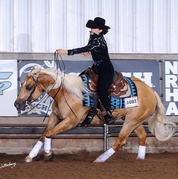 Chex From Tinseltown Winner of the Scottsdale Classic Futurity and earner of $10,384.20+