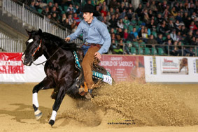 Lenas Drawin His Gun  2011 NRHA European Open and Limited Open Futurity L4 Reserve Champion, L3 & L2 Champion; Finalist in the Italian RHA Open Futurity and in the 2012 Italian Int. Open Derby Earner of $41,694.47+