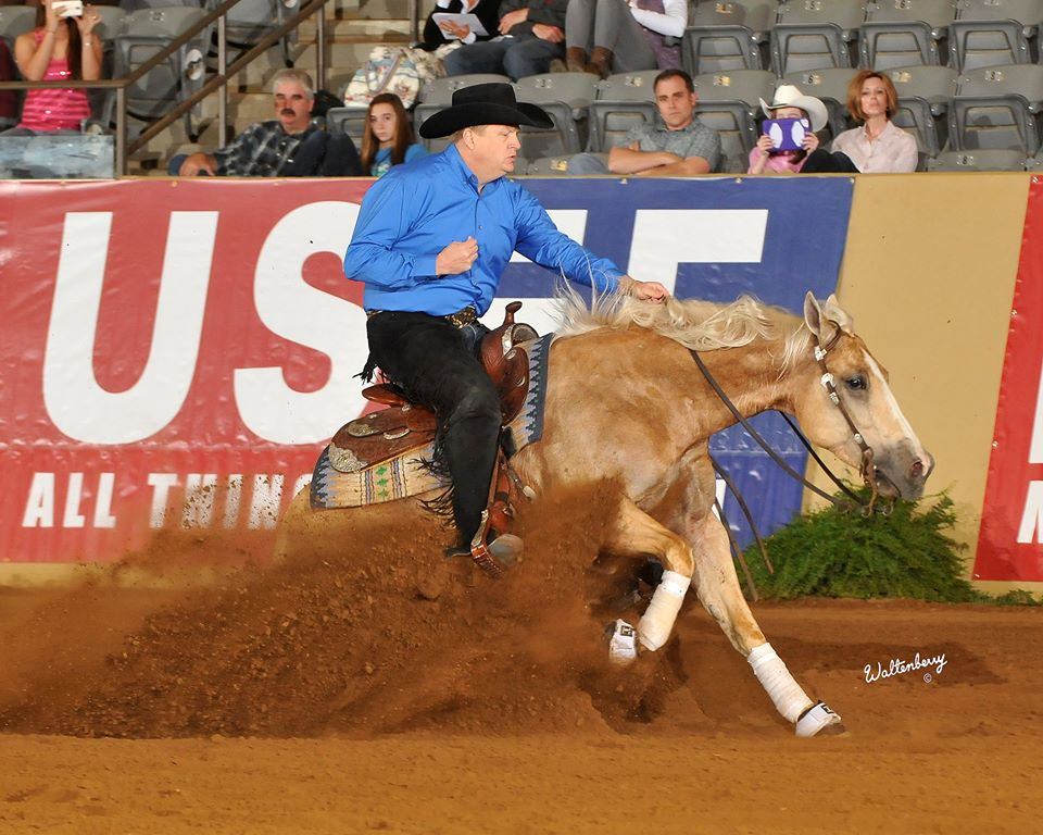 Dun Git A Nicadual  Member of Squad USA at 2014 WEG 5th, 2011 NRHA Non Pro Futurity; 2011 Tulsa Reining Classic Non Pro Futurity Champion; 2011 Scottsdale Classic Non Pro Futurity Champion; 2011 SWRHA Non Pro Futurity Reserve Champion; 6th, NCRHA Non Pro Futurity Earner of $90,998+