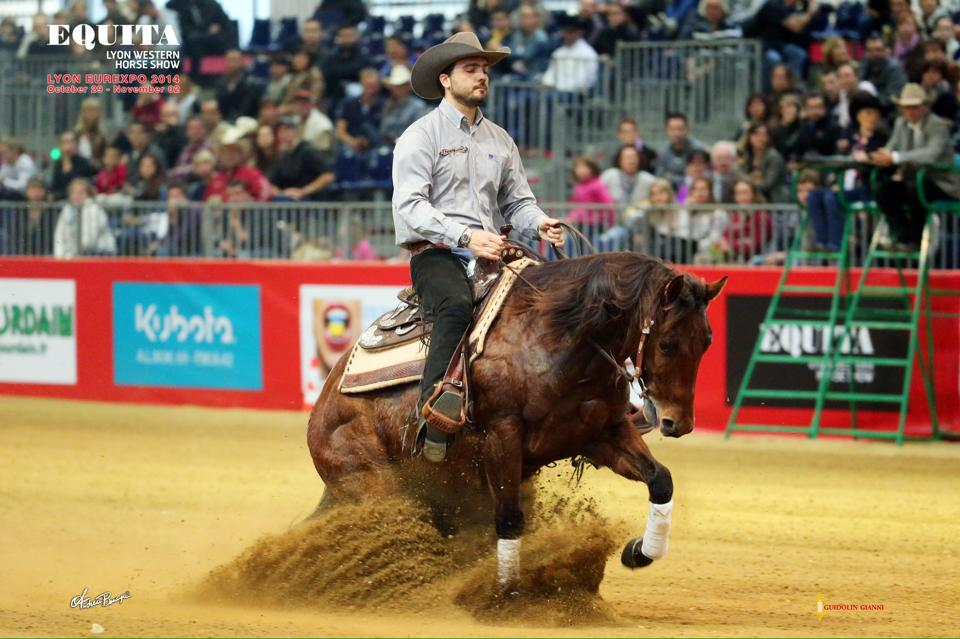 Yellow Hen Gigolo earning $817+:  2014 Equita Lyon L4 Open Futurity- 3rd