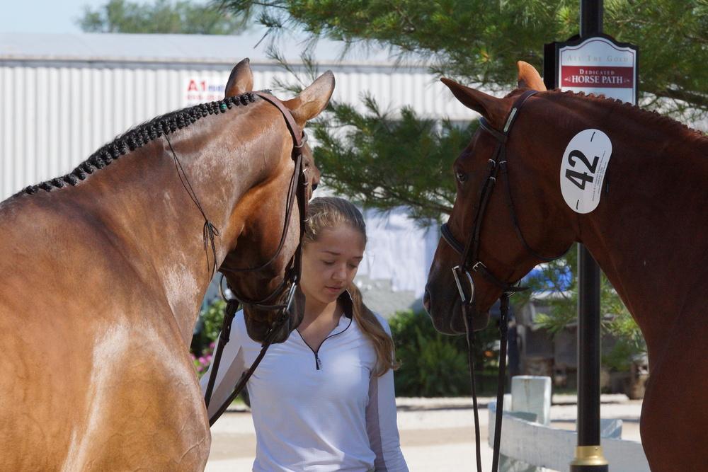 Gretchen holding horses.JPG