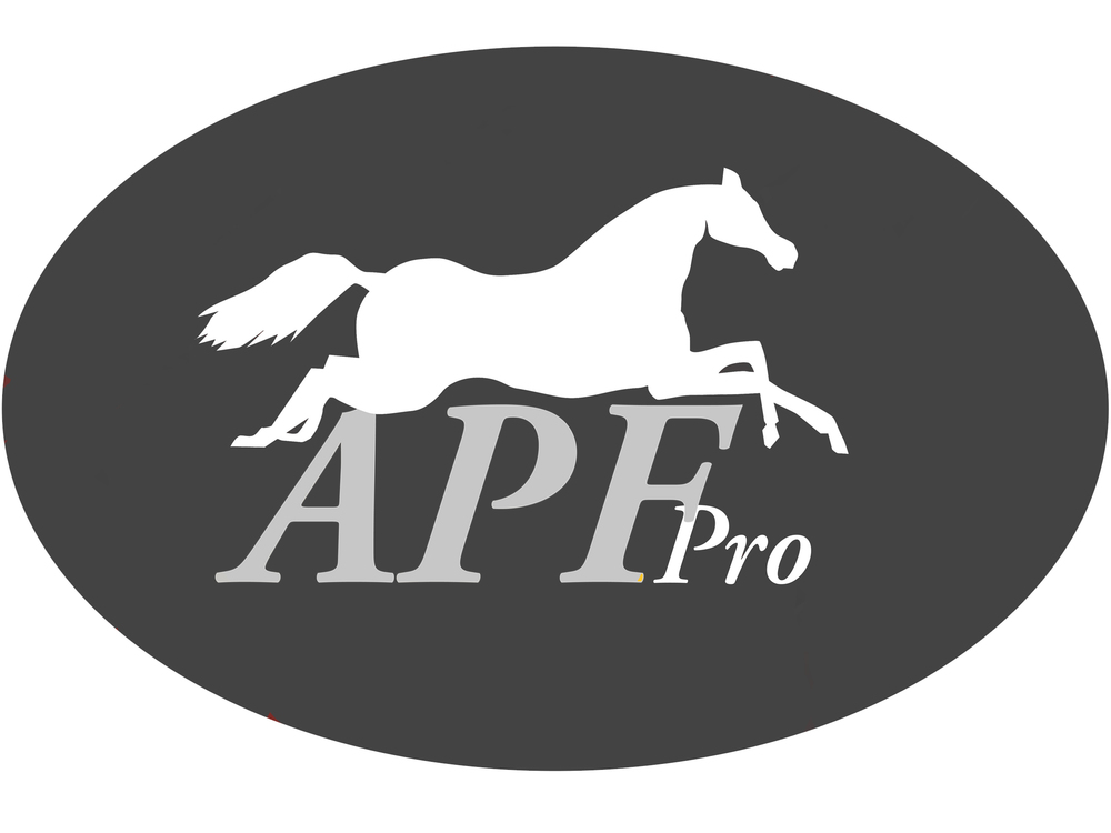 APF Logo No Background Grey.jpg