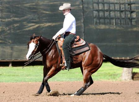 SNS Uvalde King    Top 5 in the 2011 Scottsdale Classic Limited Open Futurity, Top 10 at the 2011 John Deere Futurity Ltd L2 Open, Top 5 at the 2011 Scottsdale Classic Futurity Ltd L2 Open, Top 10 2012 Darling 888 Ranch Derby L2 Open, and multiple time winner of ancillary Limited Non Pro classes, earing   over  $4100