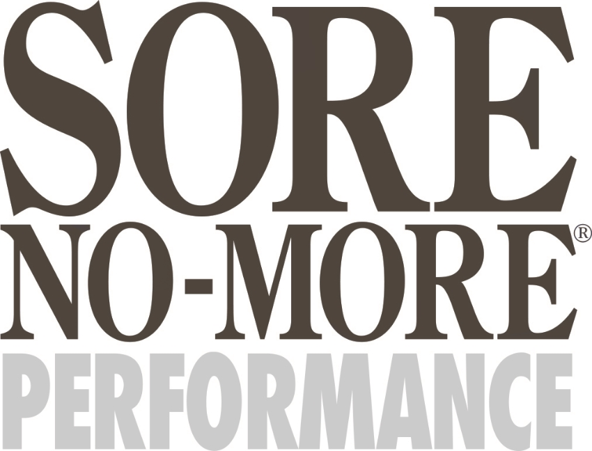 SNM Performance Logo grey.jpg