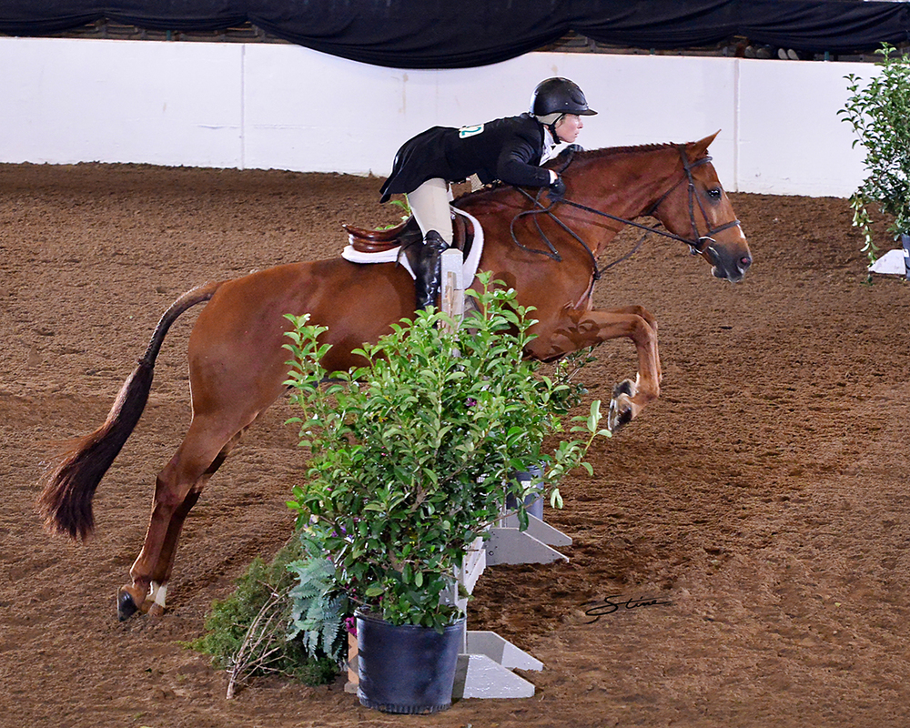 Courtney Calcagnini and Harley, owned by Patrick and Jana Rodes