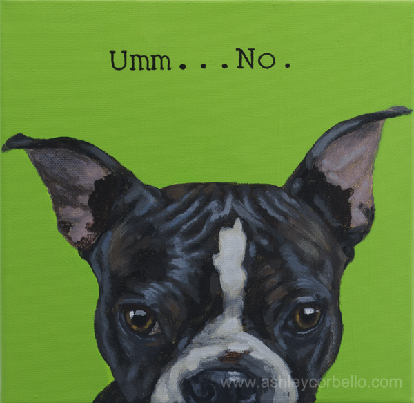 Boston Terrier pet art by Ashley Corbello
