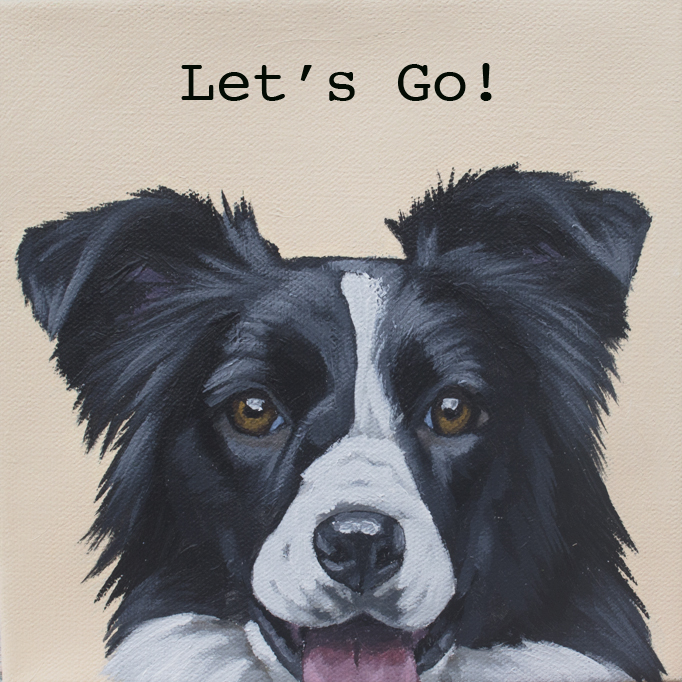 Corbello-Lets go border collie web res.jpg