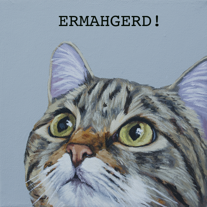 Corbello-ermahgerd cat web res.jpg