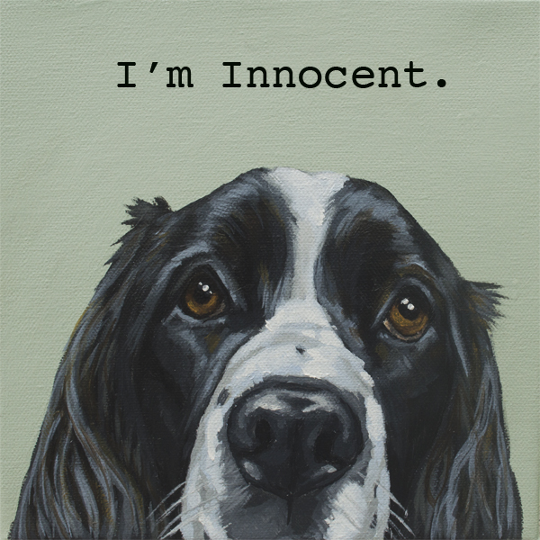 Corbello-Innocent-Springer web res.jpg