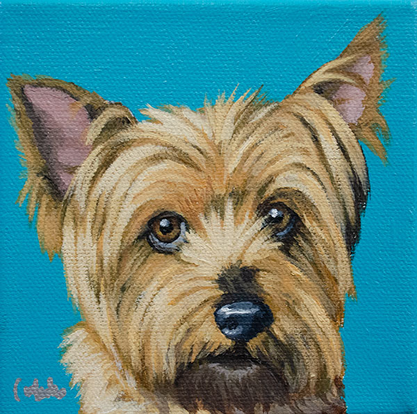 ashleycorbello-yorkie-dog-painting.jpg