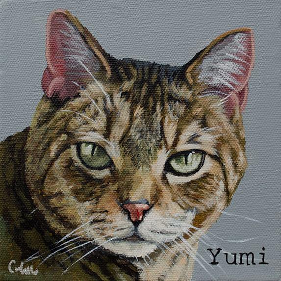 ashleycorbello-tabby-cat-painting.jpg