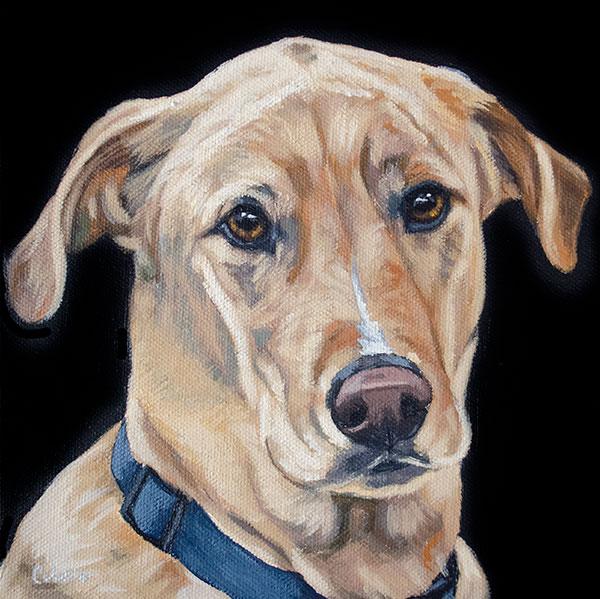 ashleycorbello-yellow-lab-dog-painting.jpg
