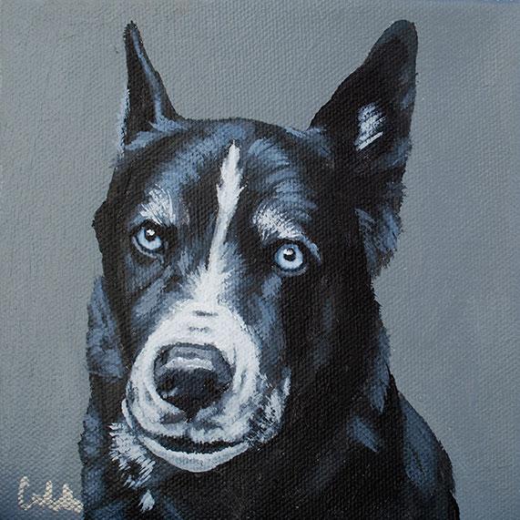 ashleycorbello-husky-mix-dog-painting.jpg