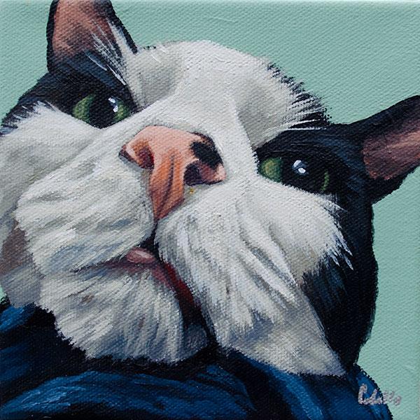 allison-cat-webres.jpg