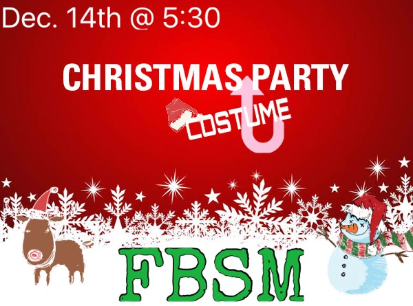 Fbsm Christmas Costume Party