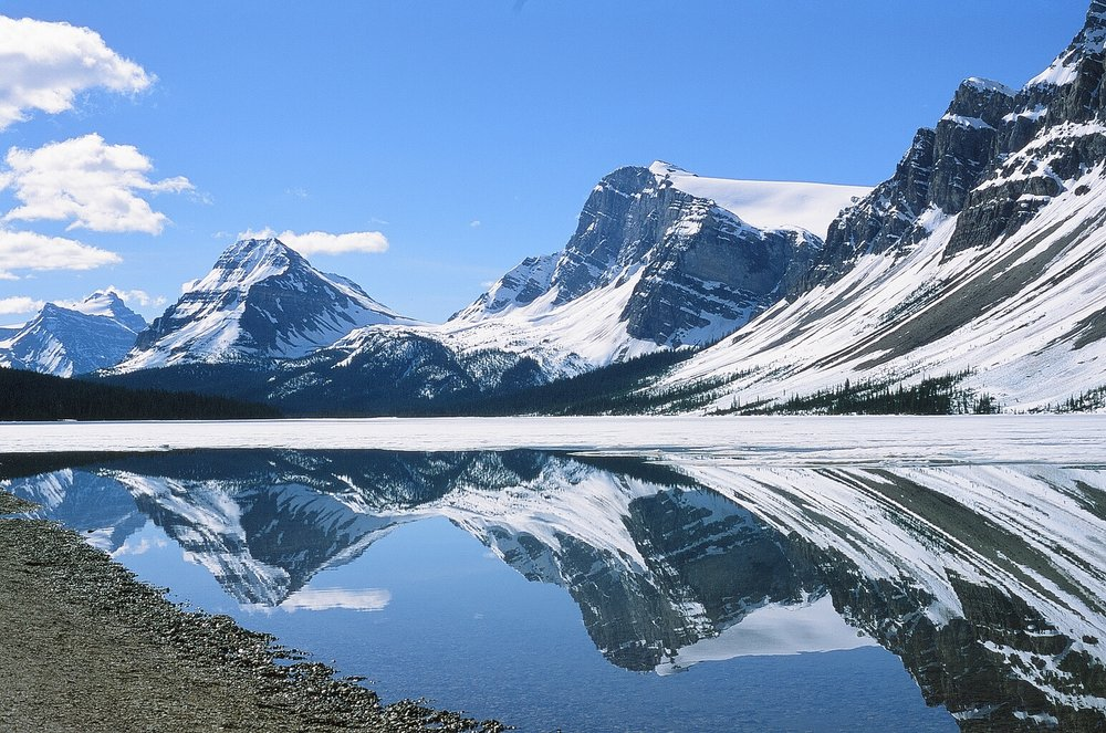 Reflection, Bow Lake - Banff, CA    Provia 100F - Olympus OM10