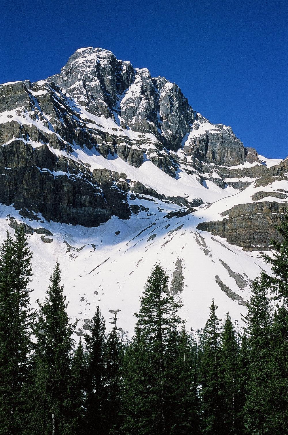 Crowfoot Glacier - Banff, CA    Provia 100f - Olympus OM10