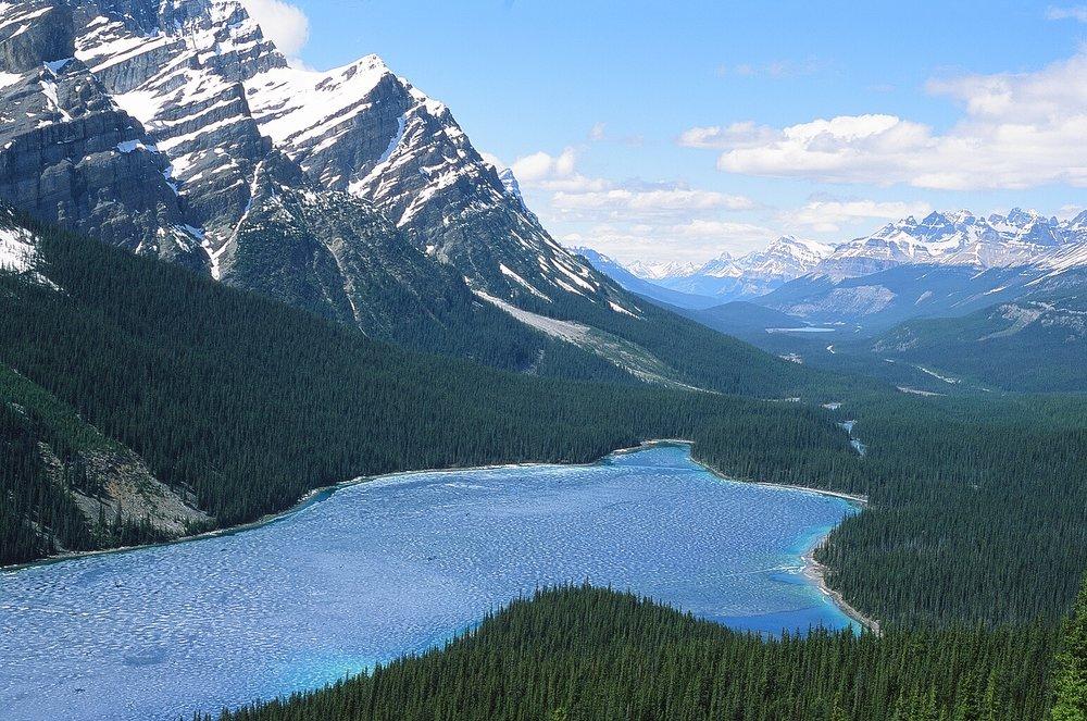 Peyto Lake - Banff, CA    Provia 100F - Olympus OM10