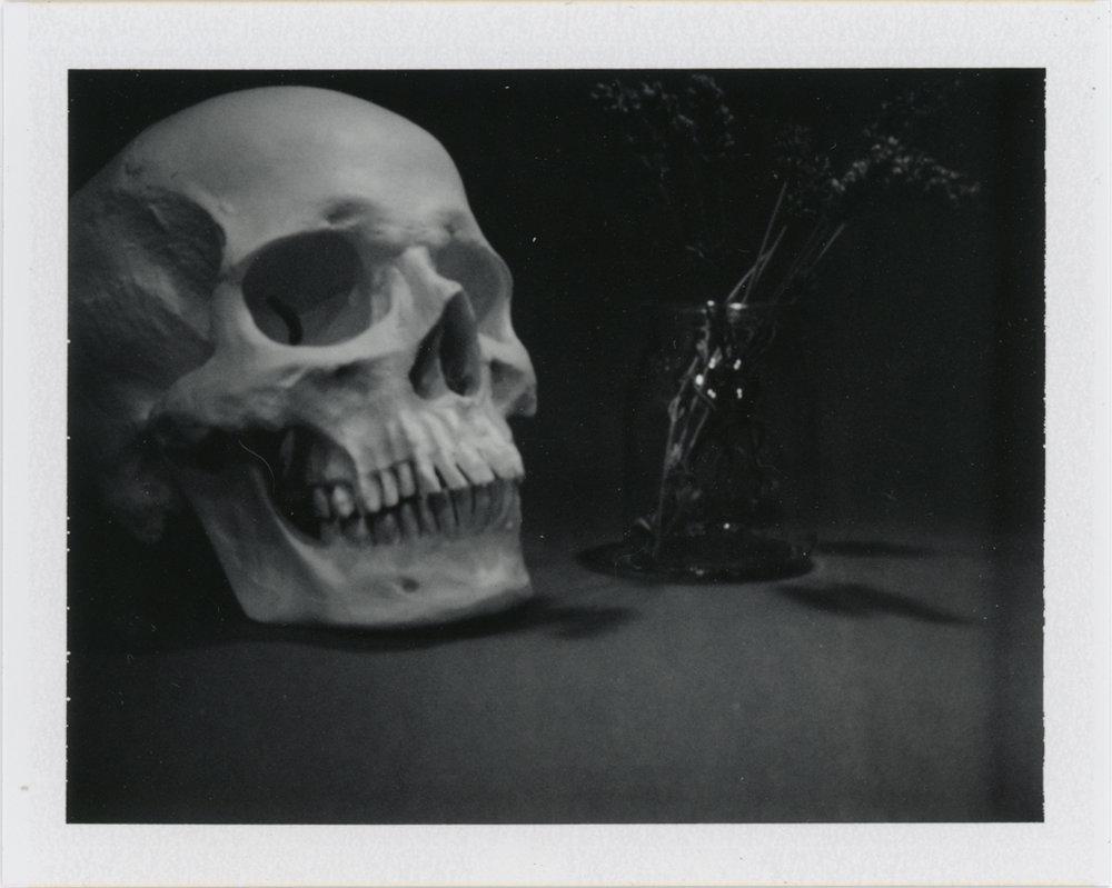 Life & Death - Still Life - Philadelphia, PA    Fujifilm FP 3000b - Polaroid Colorpack ii