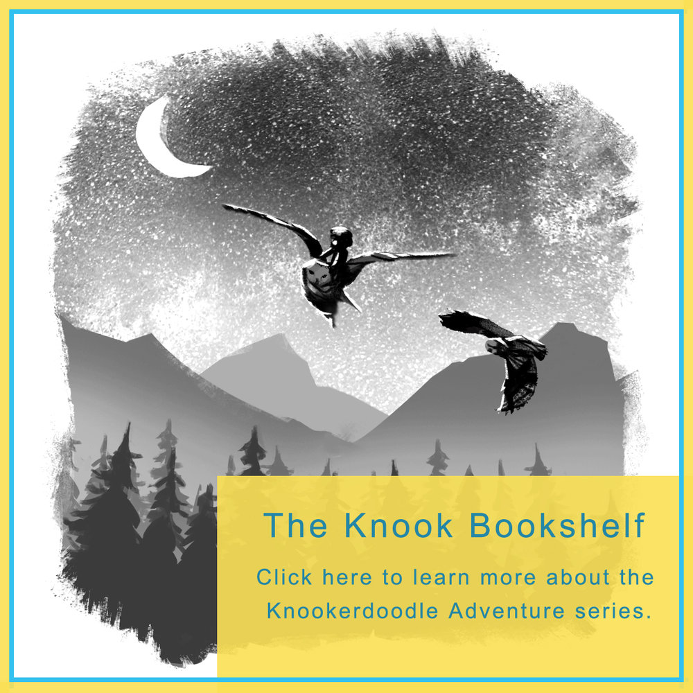 KnookBookShelf.jpg