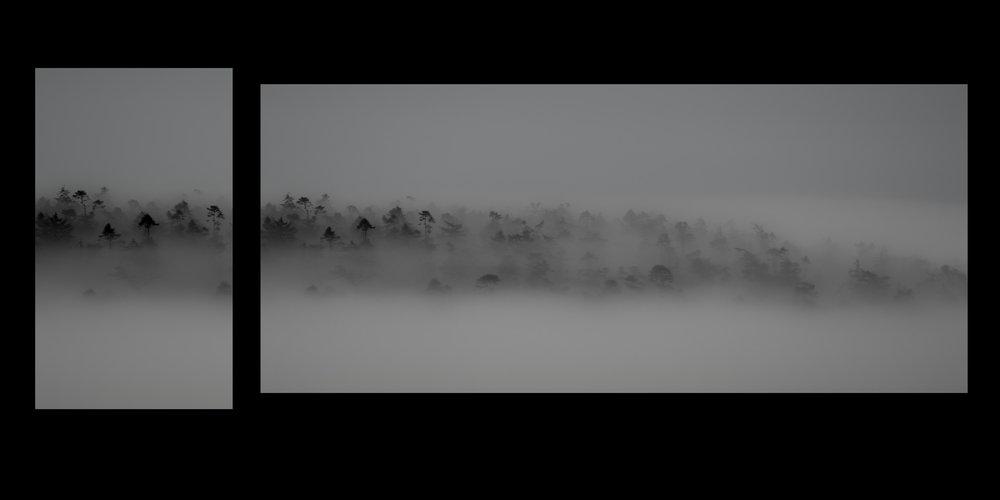 foggy balance.jpg