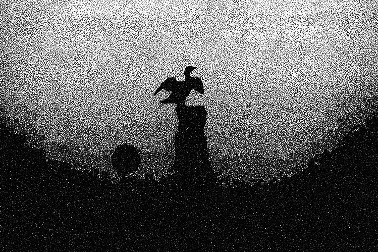 Meridian West Design Photography