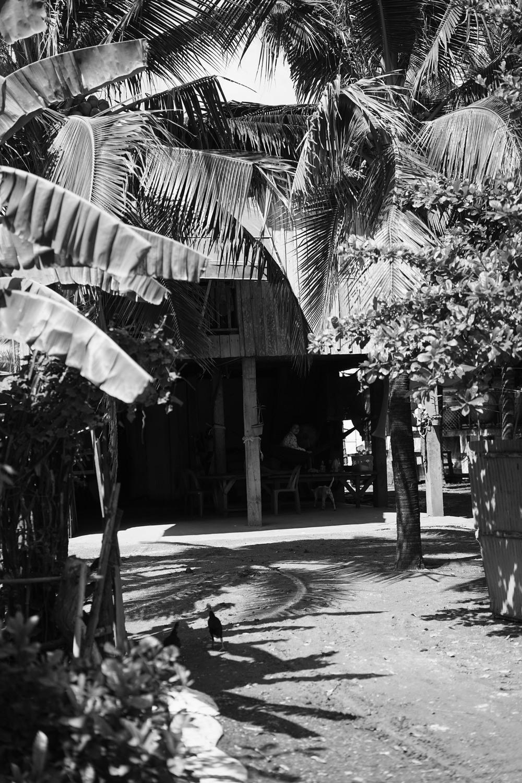 CambodiaJune15-41-3.jpg