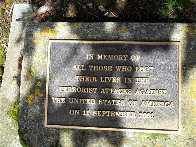 Cambridge Memorial Tree - Cambridge, Waikato, New Zealand