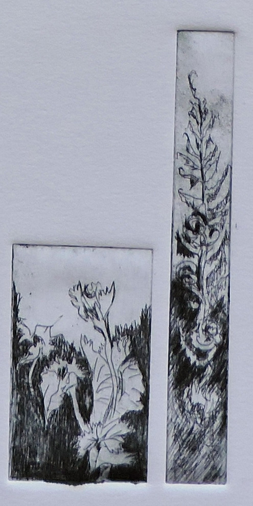 printmaking, garden-web.jpg
