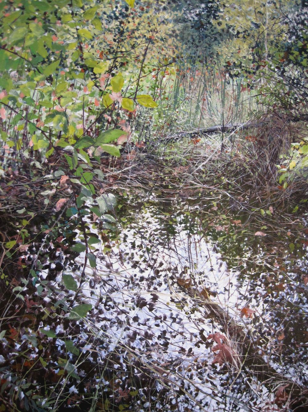 Thickets Near the Water's Edge